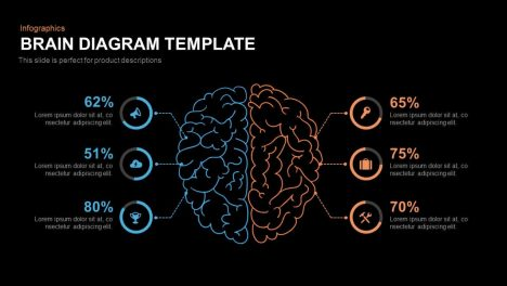 Brain Diagram PowerPoint Template and Keynote Slide