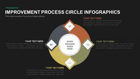 Improvement Process Circle Infographics