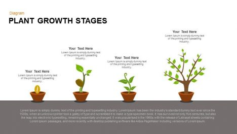 Growing plant PowerPoint template