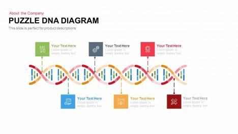 Puzzle Dna Diagram