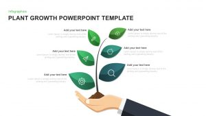 Plant Growth Template for PowerPoint and Keynote