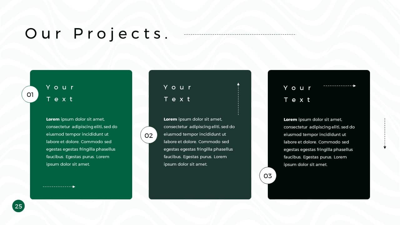 Business Presentation PowerPoint Template Our Projects